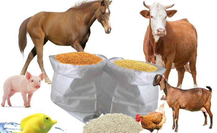 PAZ Concerned With High Prices Of Stock Feed