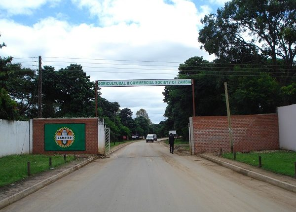 Hosting Of 2020 Zambia Agriculture And Commercial Show In Limbo